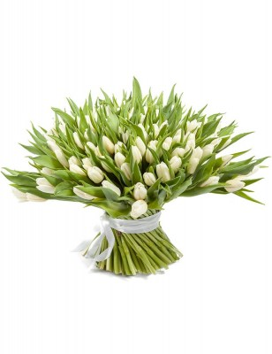 white-tulips-delivery